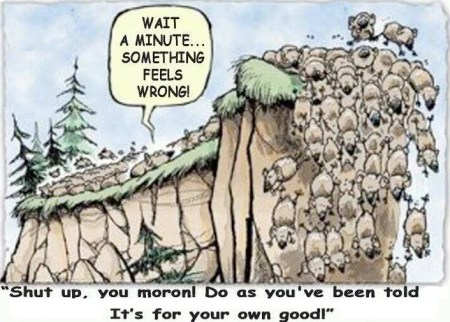 Don't be a lemming – a true story